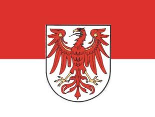 Adler Brandenburg